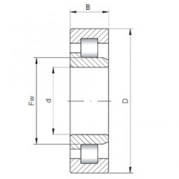 440 mm x 540 mm x 60 mm  ISO NJ2888 cylindrical roller bearings