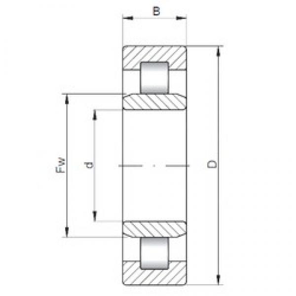 17 mm x 40 mm x 16 mm  ISO NU2203 cylindrical roller bearings #2 image